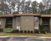 801 Indian Wells Ct Unit 801, Murrells Inlet image