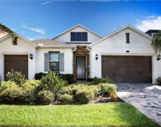 14207 Cheshire Acres Place, Tampa image