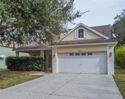 12910 Terrace Springs Drive, Temple Terrace image