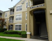 8101 Coconut Palm Way Unit 101, Kissimmee image