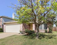 2321 Live Oak Drive, Little Elm image