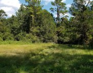 5777 COUNTY RD 209  S, Green Cove Springs image