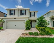 19220 Roseate Drive, Lutz image