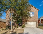 15514 Portales Pass, Helotes image
