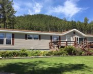 25909 Carroll Creek Rd, Custer image