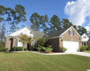893 Willow Walk, Calabash image