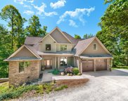 603 Boxwood Branch  Lane, Hendersonville image