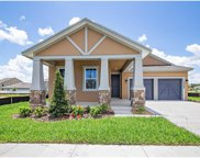 15396 Sugar Citrus Drive, Winter Garden image
