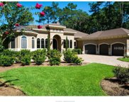 35 Holly Grove Rd, Bluffton image