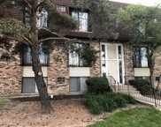185 North Waters Edge Drive Unit 201, Glendale Heights image