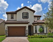 10748 Berry Creek Rd, Orlando image