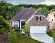 10141 Solace  Lane, Indianapolis image
