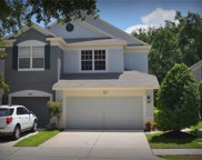 4912 Chatham Gate Drive, Riverview image
