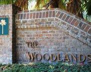 59 Woodland Ridge  Circle, Beaufort image
