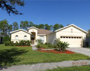 2555 Hobblebrush Drive, North Port image