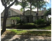 10103 Whisper Pointe Drive, Tampa image