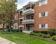 705 North Western Avenue Unit 3C, Park Ridge image