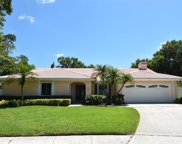 1731 Pine Creek Court, Safety Harbor image