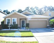 8602 Tidal Breeze Drive, Riverview image