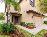 20046 Date Palm Way, Tampa image