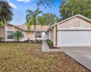 15443 Margaux Drive, Clermont image
