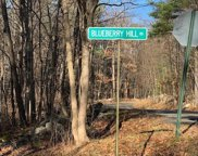 Blueberry Hill Road, Chatham image