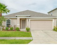 10560 Cabbage Tree Loop, Orlando image