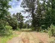 13721 County Road 4113, Lindale image
