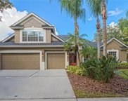 3503 Old Course Lane, Valrico image