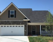 3210 Jessie Cove Lane, Knoxville image