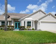 14902 Perriwinkle Place, Tampa image