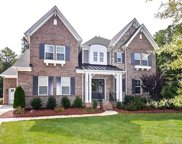 101  Rainbow Falls Lane, Weddington image