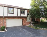 11221 Cameron Parkway, Orland Park image