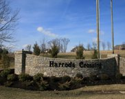 2921 Harrods Crossing Blvd, Crestwood image