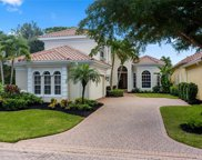 22292 Natures Cove Ct, Estero image