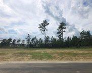 5342 Barcroft Lake Drive, Leland image