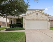 437 Grey Feather Ct, Round Rock image