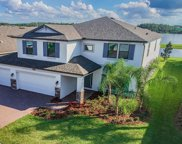 18256 Roseate Drive, Lutz image