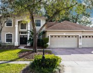 4123 Lillian Hall Lane, Orlando image