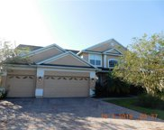 4386 Fawn Lily Way, Kissimmee image