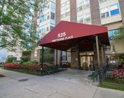 525 West Hawthorne Place Unit 3003, Chicago image