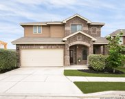 1419 Crow Ct, San Antonio image