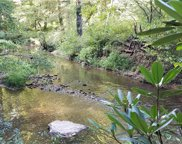 77  Misty Valley Parkway Unit #Lot 4, Arden image