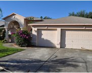 11528 Andy Drive, Riverview image