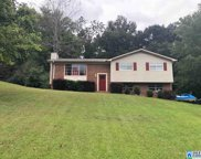 104 Kingstown Cir, Trussville image