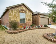 14148 Rabbit Brush, Haslet image