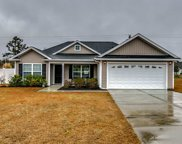 401 Willie Joes Court, Conway image