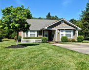 2905 Huckleberry Hill  Drive, Fort Mill image