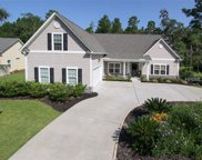 217 Medlock Place, Bluffton image