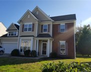 14027  Millers Creek Lane, Charlotte image